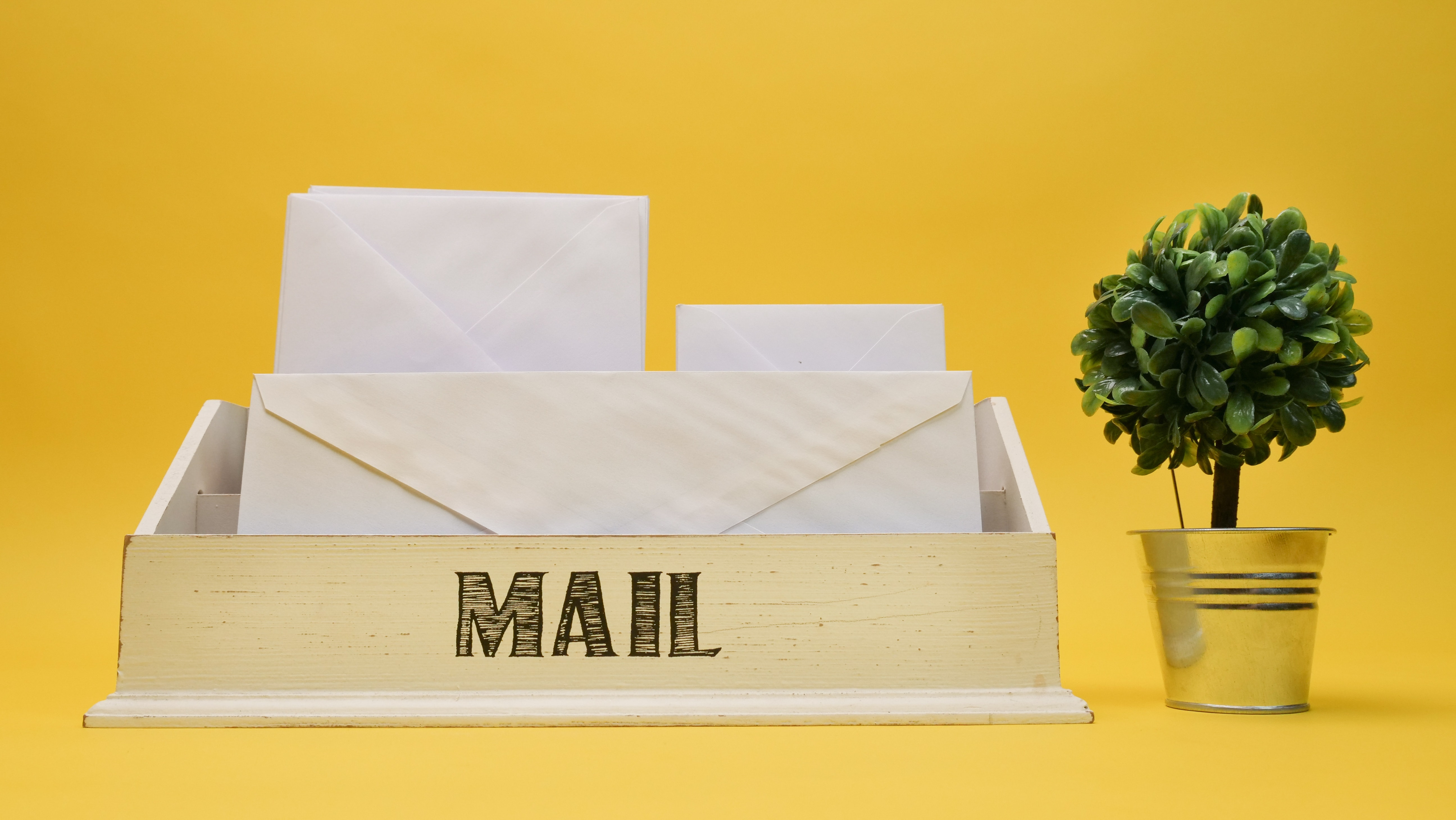 Mail inbox containing three envelopes next to a small potted plant against a yellow background