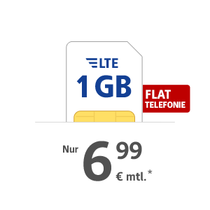 1 GB LTE Internet