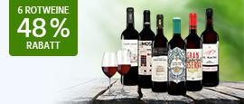 Vinos Rotwein Paket