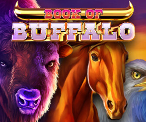 Play with the buffalo