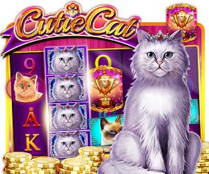 Cutie Cat - die süße SlotMachine