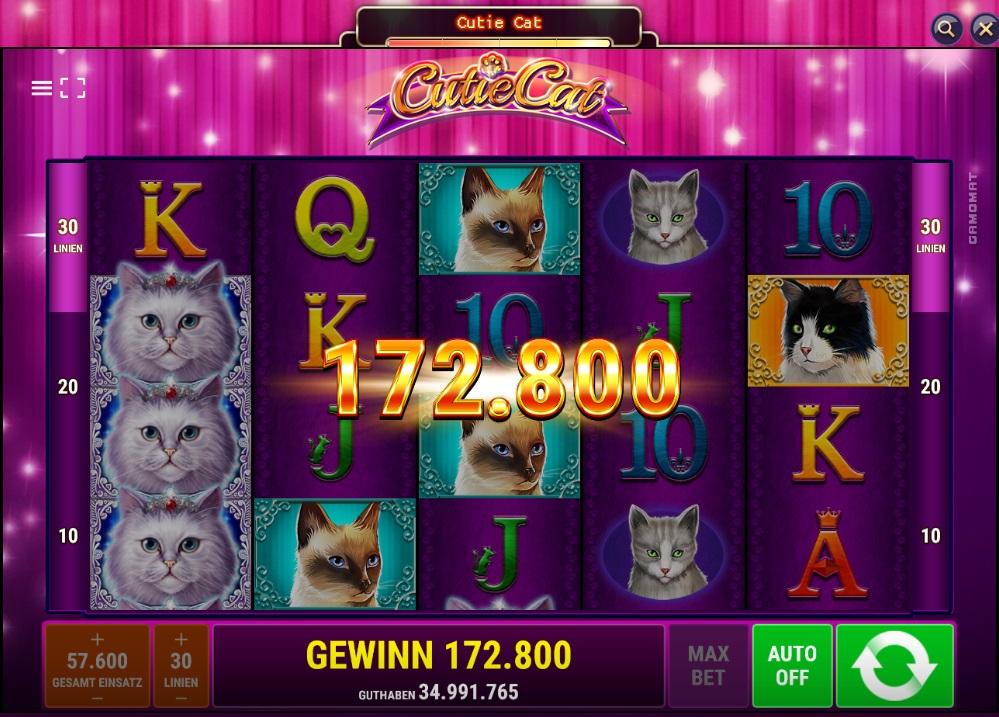 Das neue Jackpot.de Spiel Cutie Cats