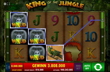 Dschungel Wahnsinn - Gewinnen Sie Freispiele!