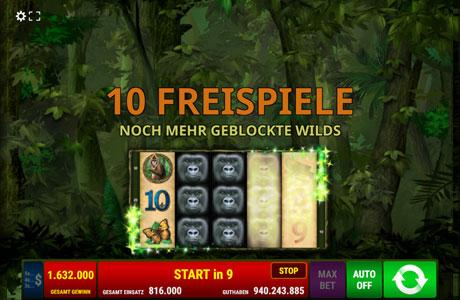 Dschungel Wahnsinn - Räumen Sie richtig ab!