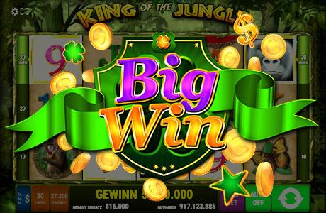 Dschungel Wahnsinn - Schaffen Sie einen Big Win?