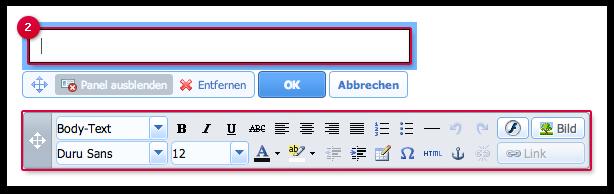 Text eingeben und formatieren