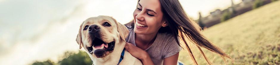 Hundeversicherung